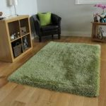 Bright Green Glossy Thick Shag Pile Rug- Memphis 80×150