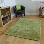 Lime Green High Shiny Pile Super Soft Rug- Juno 80×150