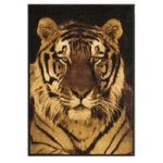 Milan Black and Gold Wildlife Tiger Print Rug – 6820-B51 120 cm x 170