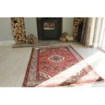Hand Tufted Traditional Hamadan Wool Rug