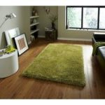 High Class Dense Vibrant Green Super Soft Shaggy Rug – Seattle 145cm x