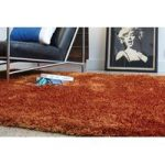 Varanasi Orange Modern Shaggy Area Rug